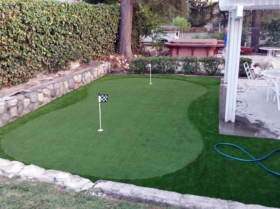Synthetic Turf Fields Landing California Landscape Photos
