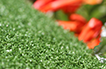 Artificial Grass Putting Greens